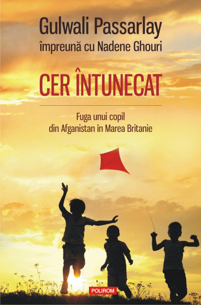Cer_intunecat_800px