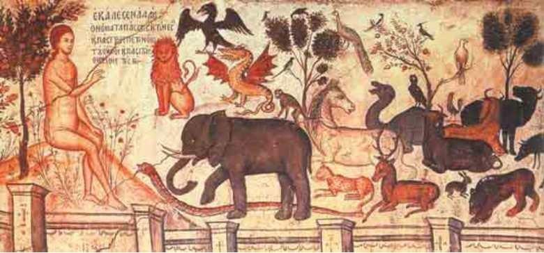 adam-da-nume-animalelor-pictura-biserica